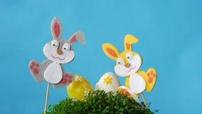 Los conejitos de pascua toman los huevos de Pascua almacen de video