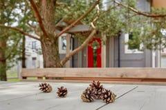 Los conos de abeto mienten en la tabla en el fondo de la casa Fotos de archivo