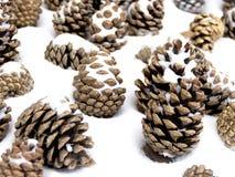Los conos en la nieve Imágenes de archivo libres de regalías