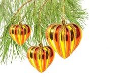 Los corazones de la Navidad en la ramificación de árbol de pino aislaron Fotografía de archivo libre de regalías