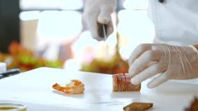 Los cortes del cuchillo cocinaron la carne de pescados almacen de video