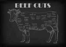 Los cortes enteros de la res muerta del toro de la vaca de ganado cortaron el esquema s del infographics de las piezas libre illustration