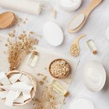 Los cosméticos hechos en casa blancos rústicos fijaron de los productos naturales para los accesorios del cuidado y del baño del  Fotos de archivo