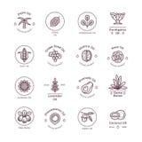 Los cosméticos orgánicos sanos de la flor engrasan etiquetas y logotipos lineares del vector ilustración del vector