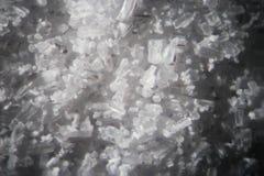 Los cristales de la creatina por el microscopio parecen metanfetamina Suplemento dietético atlético en primer del supermacro de l Fotografía de archivo