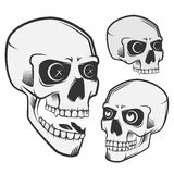 Los cráneos del vintage fijaron para los emblemas, logotipo, estilo del tatuaje Imagen de archivo libre de regalías
