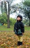 Los cuatro años lindos de niño en capa y botas impermeables están mirando las hojas que caen Imagen de archivo libre de regalías