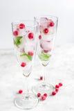 Los cubos de hielo con las bayas y la menta en los vidrios para el verano beben el fondo blanco Foto de archivo libre de regalías