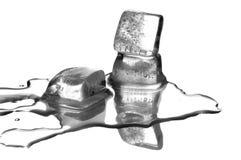 Los cubos de hielo de fusión Imagenes de archivo