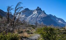 Los Cuernos在托里斯del潘恩国家公园在智利,巴塔哥尼亚 免版税库存照片