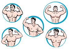 Los culturistas de la historieta muestran los músculos Imágenes de archivo libres de regalías
