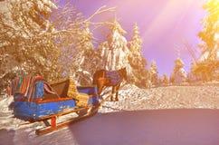 Los días de fiesta del Año Nuevo en montañas Imágenes de archivo libres de regalías