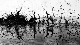 Los descensos bajan en el agua Fotografía de archivo libre de regalías