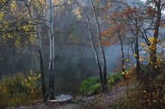 Los descensos pasados de la niebla Fotos de archivo