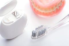 Los dientes modelan con el cepillo de dientes y la seda dental en el fondo blanco Fotografía de archivo libre de regalías
