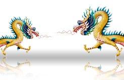 Los dragones vuelan en el fondo blanco del esmalte Imagenes de archivo