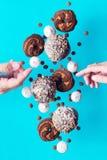 Los dulces del vuelo Fotos de archivo libres de regalías