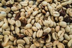 Los E.E.U.U., Hawaii, isla grande Los granos de café marrones asados, pueden ser utilizados como un fondo y textura imagenes de archivo