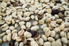 Los E.E.U.U., Hawaii, isla grande Los granos de café marrones asados, pueden ser utilizados como un fondo y textura fotos de archivo libres de regalías