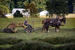 LOS E.E.U.U. - Ohio - Amish imagenes de archivo