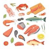 Los ejemplos de los mariscos del vector fijaron pescados frescos y el cangrejo planos Langosta y ostra, camarón y menú, animal de Imagen de archivo libre de regalías