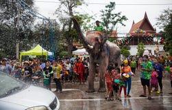 Los elefantes rocían el agua en conmemoración del festi del agua de Songkran Imágenes de archivo libres de regalías