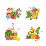 Los elementos lindos planos del verano del vector, cócteles, flamenco, pilas de las hojas de palma fijaron aislado en el ejemplo  libre illustration