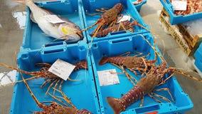 Los envases cogen las delicadezas de los pescados de mar, langoustines metrajes
