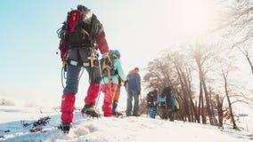 Los escaladores equipados se siguen a través de la alta nieve, la visión desde la parte posterior almacen de metraje de vídeo