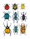 Los escarabajos dan el sistema exhausto libre illustration