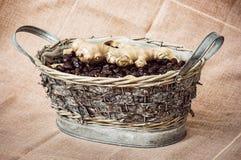 Los escaramujos y el jengibre secados arreglaron en la cesta de mimbre de la lata, hea Fotos de archivo libres de regalías