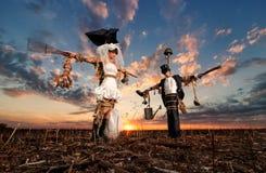 Los espantapájaros de novia y del novio Imagenes de archivo