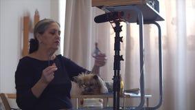 Los especialistas veterinarios están registrando el primer blog sobre cuidado del cabello del perro almacen de video