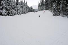 Los esquiadores en el esquí se inclinan en Tatras bajo, Eslovaquia Imágenes de archivo libres de regalías