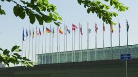 Los Estados miembros del Parlamento Europeo de las banderas de uni?n europea metrajes