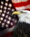 Los Estados Unidos de América - patriotismo Imagenes de archivo