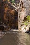 Los estrechos en Zion National Park, Utah, los E.E.U.U. Fotografía de archivo libre de regalías