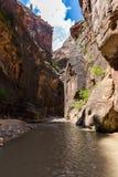 Los estrechos en Zion National Park, Utah, los E.E.U.U. Imagen de archivo