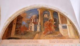 Los frescos con escenas a partir de la vida de St Francis de Assisi Imagen de archivo libre de regalías