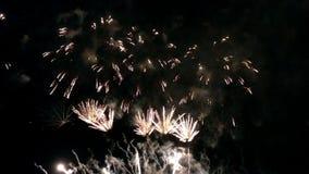 Los fuegos artificiales celebran en la noche del día de fiesta almacen de video