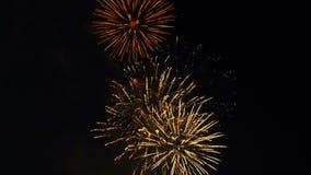 Los fuegos artificiales coloridos, hermosos estallan en el cielo nocturno metrajes
