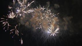 Los fuegos artificiales coloridos, hermosos estallan en el cielo nocturno almacen de metraje de vídeo