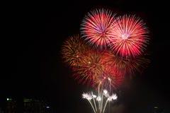 Los fuegos artificiales coloridos sobre el cielo nocturno, los fuegos artificiales rojos alinean Fotografía de archivo libre de regalías