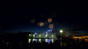 Los fuegos artificiales de la peonía y del cometa están estallando en el cielo nocturno 4K almacen de metraje de vídeo