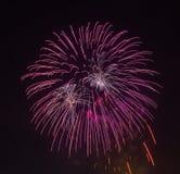Los fuegos artificiales de la tarde en el cielo en honor de la celebración de Victory Day Imagen de archivo libre de regalías