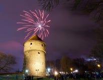 Los fuegos artificiales del Año Nuevo Fotografía de archivo