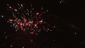Los fuegos artificiales en el cielo nocturno almacen de video