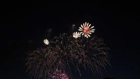 Los fuegos artificiales encienden para arriba el cielo Celebración del Año Nuevo almacen de metraje de vídeo