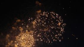Los fuegos artificiales encienden para arriba el cielo Celebración del Año Nuevo almacen de video