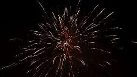 Los fuegos artificiales hermosos muestran en la celebración del Año Nuevo Los fuegos artificiales más grandes para el fondo Fuego metrajes
